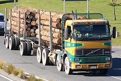 Правила по охране труда в лесозаготовительном, деревообрабатывающем производствах и при проведении лесохозяйственных работ: внесены изменения